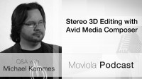 Stereo 3D Editing with Avid Media Composer