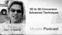 2D to 3D Conversion Advanced Techniques