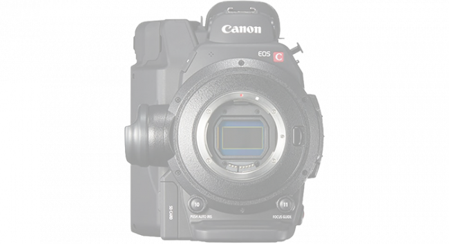 Canon EOS C300 mkII (coming soon) 1