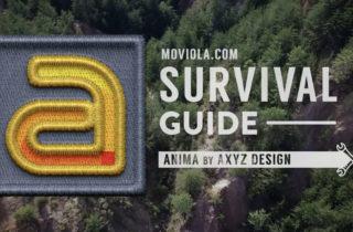 Anima Survival Guide 2