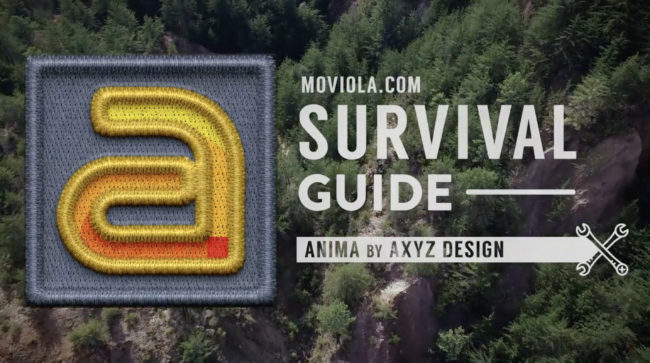 Anima Survival Guide 1